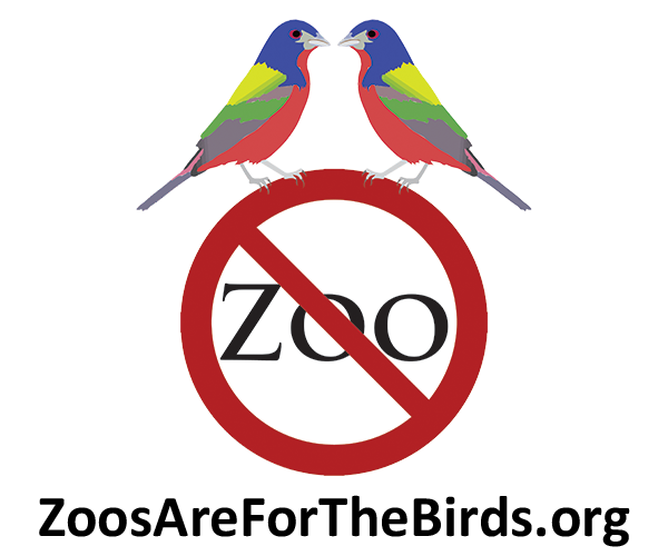 Zoo's Are For The Birds